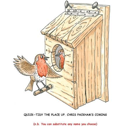 Robin s nesting box
