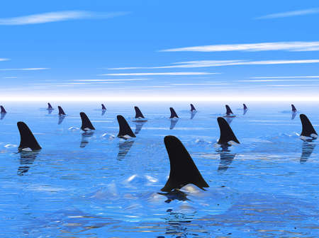 Swimming with the sharks. A metaphor for living dangerously, especially in business