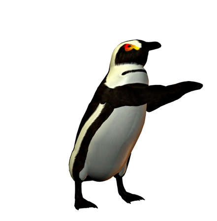 A penguin dancing and waving his flippers about. Stock Photo