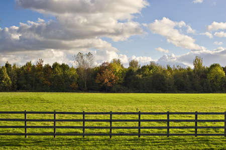 A green field behind a fence, with trees and fluffy clouds