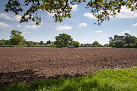 A ploughed field seen from beneath oak trees with a tractor pulling a harrow on the far side of the field photo