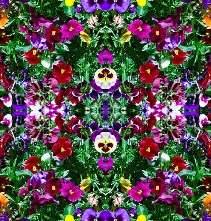 A seamlessly tiling pattern of pansy flowers. Stock Photo - 4992127