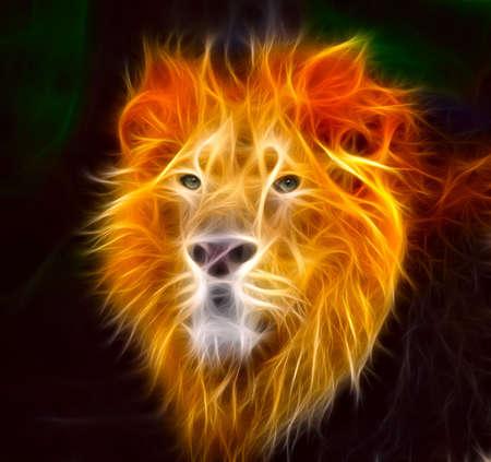 the lions: El Rey de la selva con su escalofriante mirada.