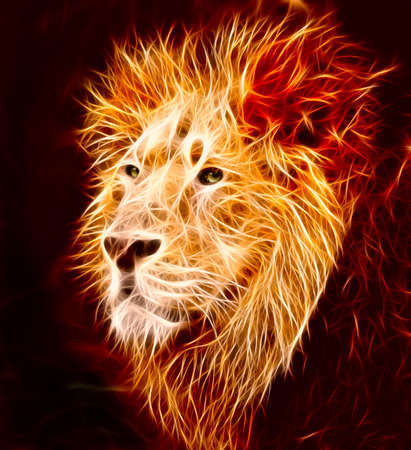 head of lion: A big male Asiatic lion with lapping flames Stock Photo