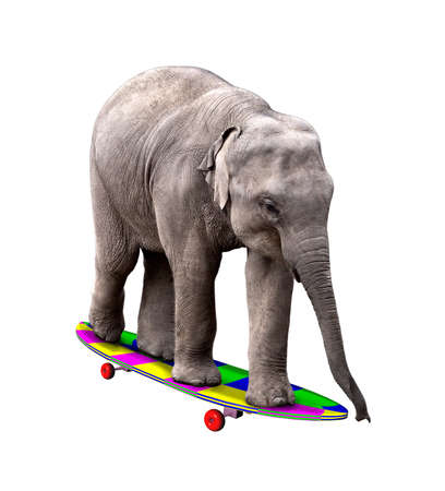 A baby elephant having fun on a brightly colored skatedboard. Isolated on white.
