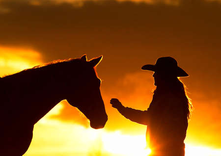 Cowgirl and Horse Silhouette 版權商用圖片