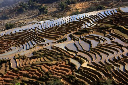 Irrigated Rice Terrace Fields in Yuanyang County - Yunnan Province, China. Water filled terraces, reflecting and absorbing the blue color of the sky. Bada Village scenic area terraces, sea of clouds Stock Photo