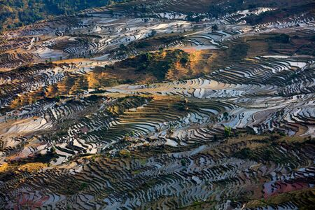 Honghe Yuanyang, Samaba Rice Terrace Fields - Baohua township, Yunnan Province China. Sama Dam Multi-Color Terraces - grass, mud construction layered terraces filled with water, blue sky reflection