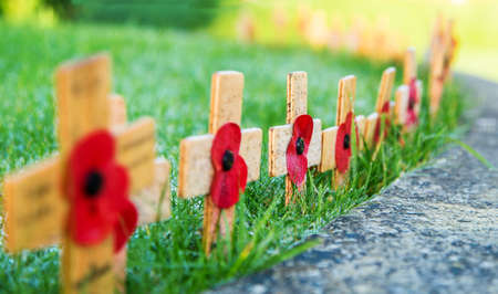 Remembrance Poppies on wooden crosses 스톡 콘텐츠