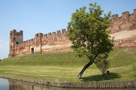 veneto: Castelfranco Veneto (Treviso, Veneto, Italy): Ancient walls and tree