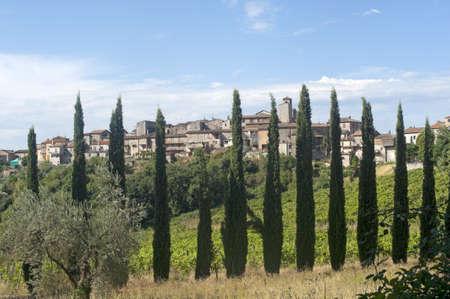 terni day: Fornole (Amelia, Terni, Umbria, Italy) - Old town and cypresses