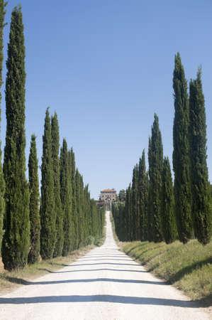 terni: Amelia (Terni, Umbria, Italy) - Old villa and cypresses