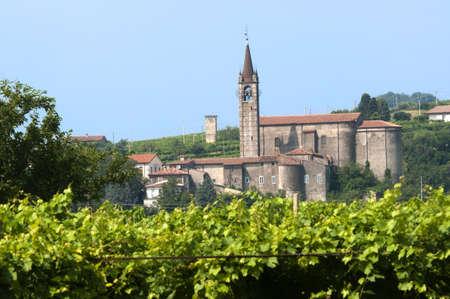 Lessinia (Verona, Veneto, italy), vineyards  at summer and village with ancient church photo