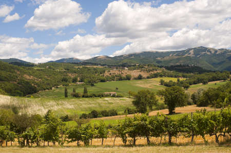 Landscape between Lazio and Umbria at summer Stock Photo