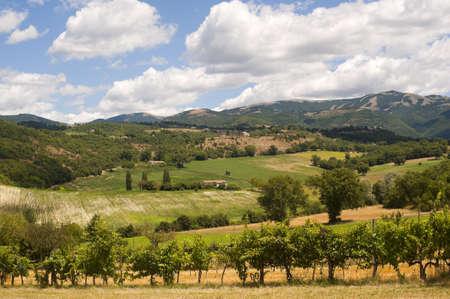 Landscape between Lazio and Umbria at summer Archivio Fotografico