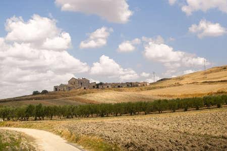 Between Puglia and Basilicata (Italy): Country landscape at summer Stock Photo - 10775402