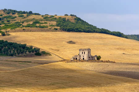 Between Puglia and Basilicata (Italy): Country landscape at summer photo