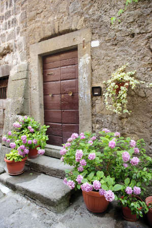 vitorchiano: Vitorchiano (Viterbo, Lazio, Italy), old typical house with hydrangeas