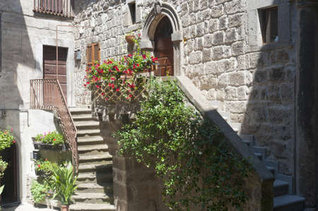 vitorchiano: Vitorchiano (Viterbo, Lazio, Italy), old typical house with plants and flowers