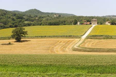 Tipica fattoria in Umbria (Italia), in estate vicino a Todi