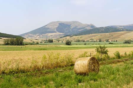 Landscape in Umbria near Foligno (Perugia, Italy) at summer photo
