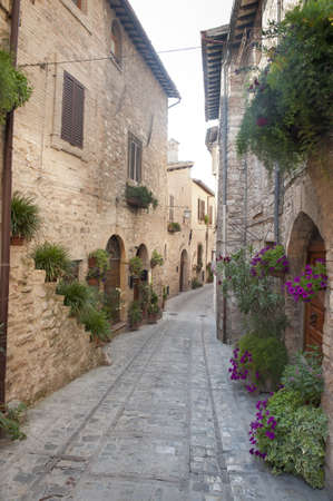 spello: Spello (Perugia, Umbria, Italy), old typical street with potted plants and flowers Editorial