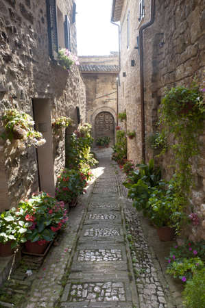 spello: Spello (Perugia, Umbria, Italy), old typical street with potted plants and flowers Stock Photo