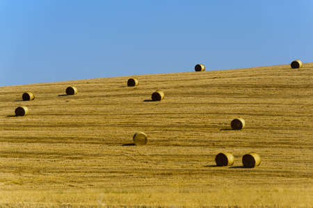 val d orcia: Landschap in Val d Orcia