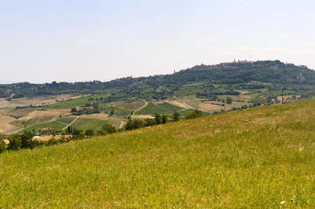 montepulciano: Montepulciano  Siena, Tuscany, Italy , landscape at summer