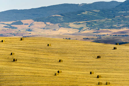 val d orcia: Landschap in Val d'Orcia
