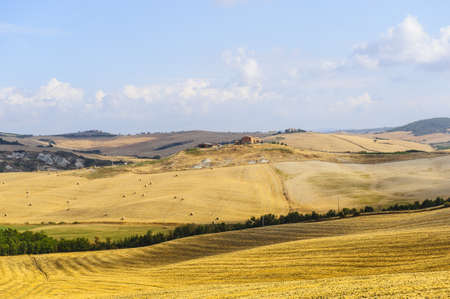val dorcia: Typical landscape in Val dOrcia (Siena, Tuscany, Italy) at summer.
