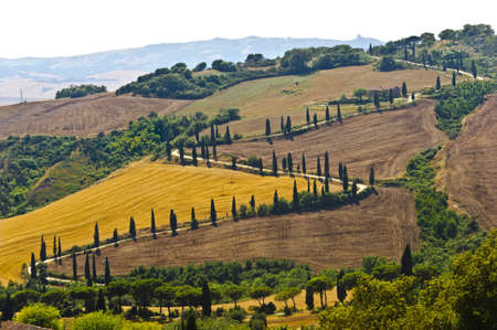 Famous winding road with cypresses in Val d Orcia photo