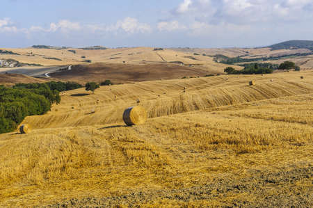 orcia: Typical landscape in Val d Orcia Stock Photo