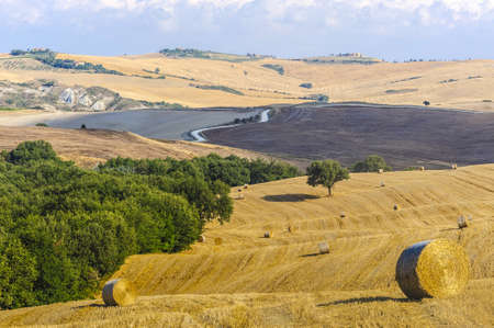 val d orcia: Typische landschap in Val d'Orcia