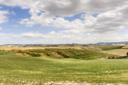 Typical landscape in Val dOrcia (Siena, Tuscany, Italy) at summer. photo