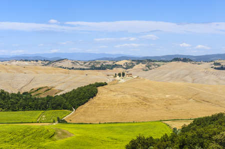 val d orcia: Typical landscape in Val d Orcia Stock Photo