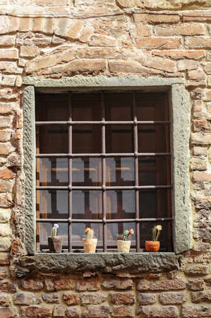Window with potted plants in Certaldo  Florence, Tuscany, Italy Stock Photo - 13013919