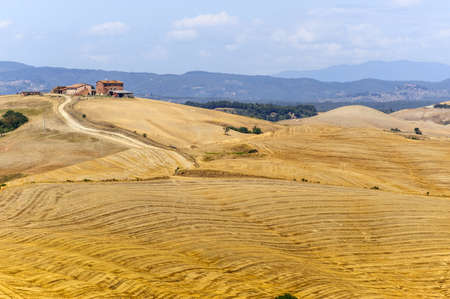Typical landscape in Val d'Orcia (Siena, Tuscany, Italy) at summer. Old farm Stock Photo - 13067767