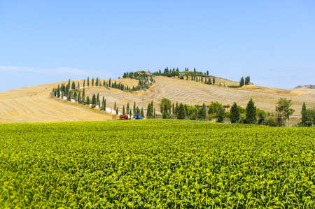 Typical landscape in Val dOrcia (Siena, Tuscany, Italy) at summer, road of the Crete Senesi photo
