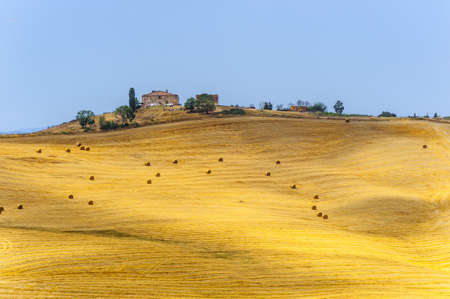 Typical landscape in Val d Orcia photo