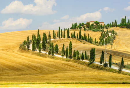 Old typical farm in Val d Orcia photo