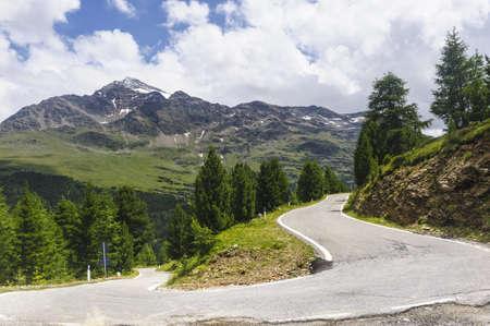 gavia: The road to Passo Gavia  Alps, Lombardy, Italy  at summer Stock Photo