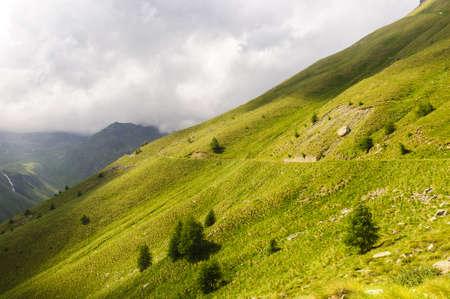gavia: The road to Passo Gavia (Alps, Lombardy, Italy) at summer