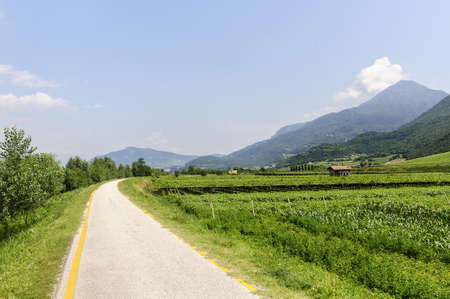 Cycle lane of the Adige valley near Trento (Trentino Alto Adige, Italy) at summer photo