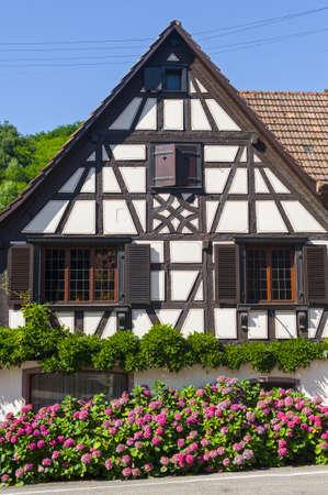 andlau: Andlau (Bas-Rhin, Alsace, France) - Exterior of whitet half-timbered house with flowers (hydrangeas) Editorial
