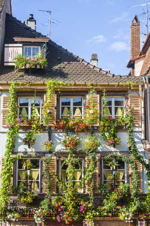 Colmar (Haut-Rhin, Alsace, France) - Exterior of old house with flowers and plants at Petite Venise