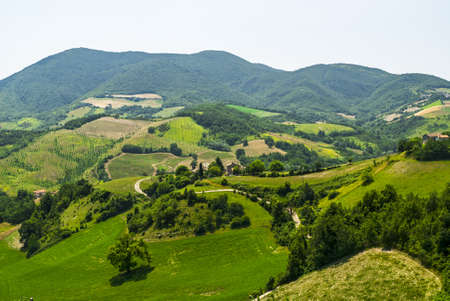 Marches  Italy  - Landscape at summer between Sassoferrato and Arcevia Stock Photo