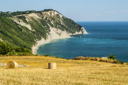 Conero (Ancona, Marches, Italy) - Cultivated coast: wheat field with bales over the Adriatico sea