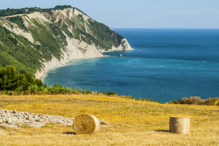 Conero (Ancona, Marches, Italy) - Cultivated coast: wheat field with bales over the Adriatico sea