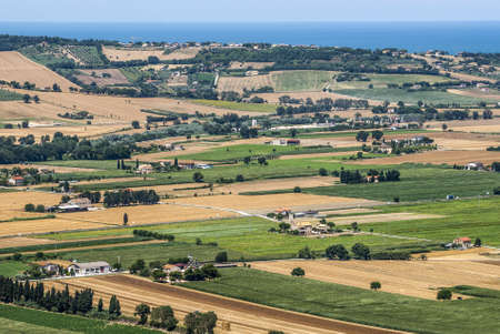 potenza: Marches (Italy), between Porto Recanati and Potenza Picena (Macerata) - Landscape with fields, hills and the sea, at summer